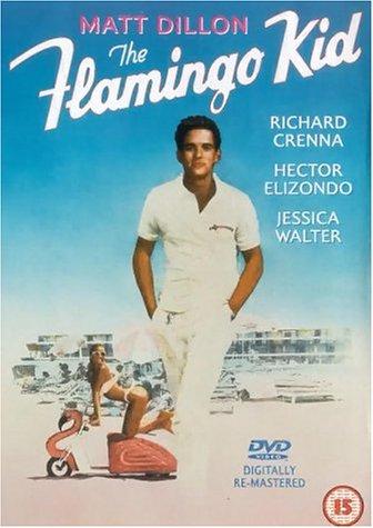 The Flamingo Kid [UK Import]