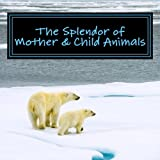 The Splendor of Mother & Child Animals: A Picture Book for Seniors, Adults with Alzheimer's and Others: Volume 6 (Picture Books for Seniors. and Others; Level 1: A 'No Text' Book)