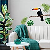Les Trésors De Lily [Q6537 - Planche de Stickers 'Jungle Tropical' Vert (Toucan, Monstera) - 50x70 cm