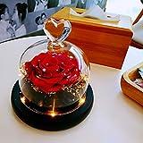 sbfwh Beauty and The Beast - Rosa de Seda con Borde de Cristal (13 x 12,5 cm), Color Rojo