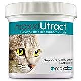 maxxicat maxxiUtract Integratore per l'apparato urinario & vescica del gatto - Aiuta a prevenire le infezioni delle vie urinarie recidive - Formula al mirtillo rosso (polvere 60g)