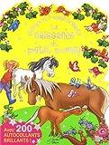 naissance du petit poney chevaux et poneys brillants