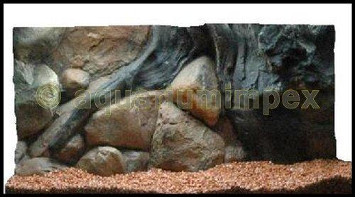 3D Rückwand 60x30 Aquariumrückwand Amazonas