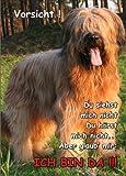 INDIGOS UG - Türschild FunSchild - SE357 DIN A5 ACHTUNG Hund Briard - für Käfig, Zwinger, Haustier, Tür, Tier, Aquarium - aus hochwertigem Alu-Dibond beschriftet sehr stabil