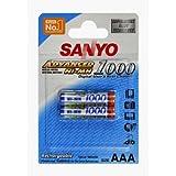 Sanyo - Paquete de 2 piles recargables AAA Micro (LR03, NiMH, 900 mAh, 1,2 V)