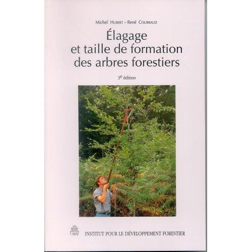 Élagage et taille de formation des arbres forestiers