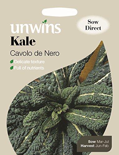 unwins-krauskohlsamen-cavolo-de-nero-200-samen-bebildertes-packchen
