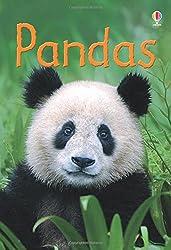 Pandas (Beginners)