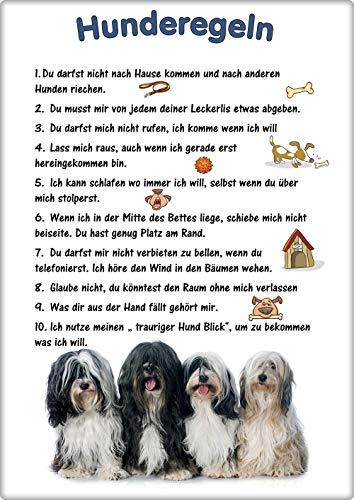 Merchandise for Fans Blechschild/Warnschild/Türschild - Aluminium - 15x20cm - - Hunderegeln - Motiv: Hund Tibet Terrier - 01