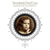Songtexte von Number One Gun - Promises for the Imperfect
