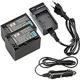 DSTE 2-pack Rechange Batterie et DC04E Voyage Chargeur pour Sony NP-FV70 HDR-XR550VESR15SR21SR68SR88SX15SX21SX44SX45SX63SX65SX83SX85FDR AX100Hdr CX105CX110CX115CX130CX150CX155CX160
