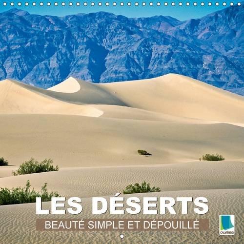 Les déserts : beauté simple et dépouillée : Sable chaud étendues infinies