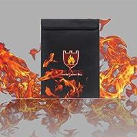 Chainplus - Bolsa para documentos de dinero ignífugo, resistente al fuego y al agua, cierre de cremallera, 38 x 28 cm
