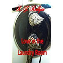 Love in the Laundry Room (English Edition)
