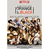 Orange Is the New Black Season 2 Poster On Silk  - Cartel de Seda - 3315D9