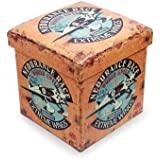 "Taburete Decorativo Infantil Retro ""Extreme Wings"" Muebles Auxiliares. 33.5 x 32 x 32 cm."