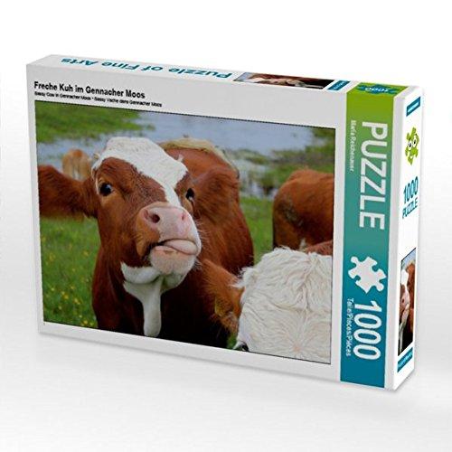 Freche Kuh im Gennacher Moos 1000 Teile Puzzle quer (CALVENDO Natur)