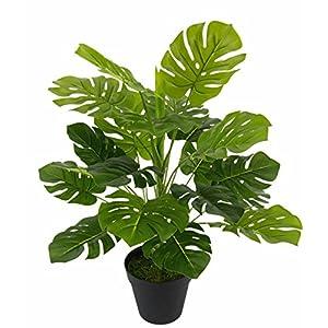 Flair Flower Splitphilopflanze im Topf, Kunst-Pflanze, Polyester, Kunststoff, Grün, 53 x 26 x 26 cm