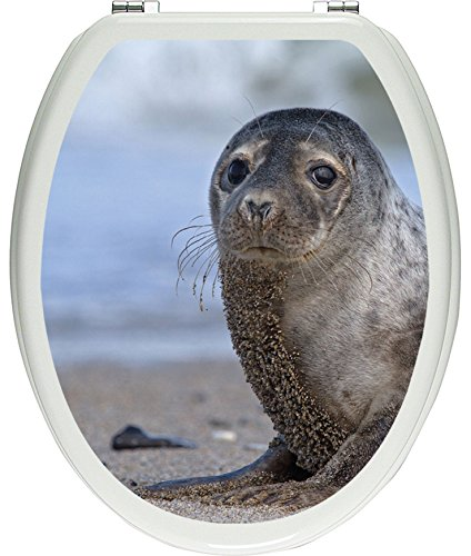 Pixxprint niedliche Robbe am Strand als Toilettendeckel Aufkleber, WC, Klodeckel - Maße: 32x40 cm, Gläzendes Material Toilettendeckelaufkleber, Vinyl, bunt 40 x 32 x 0.02 cm