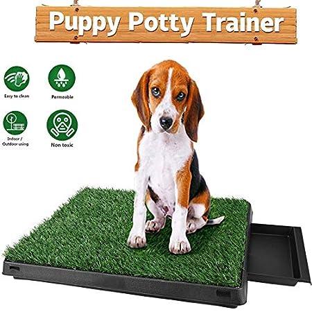 Oppikle Hundeklo Hunde Toilette Echtem Rasen Welpentoilette Trainingsunterlage für Kleine Hunde Grosse Hunde ältere…