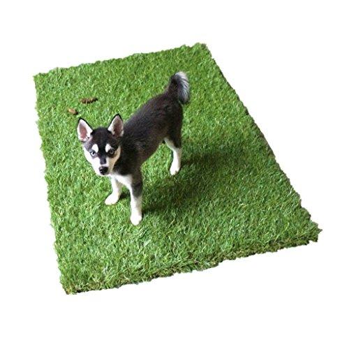 Golden Moon animali Erba Mat Series PE antibatterico tappeto erboso artificiale per animali domestici Potty (Sostituzione Erba)