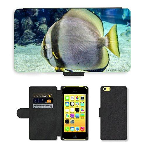 Just Mobile pour Hot Style Téléphone portable étui portefeuille en cuir PU avec fente pour carte//m00139506mer Poisson Animal eau sauvage gros plan//Apple iPhone 5C