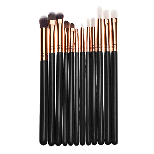 DaySing Brosse Makeup Brushes,Professionnelle Kits , 12Pcs Maquillage Base Sourcils Eyeliner Blush Pinceaux CosméTique Anticernes Makeup Brushes Brush Beauté Maquillage