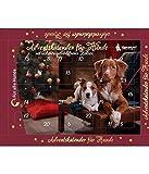 Bubeck Adventskalender für Hunde, 1er Pack (1 x 175 Grams)