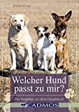 Welcher Hund passt zu mir?: Der Ratgeber...
