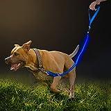 Namsan LED Hundeleine Hell Einstellbar Hundeleine mit Softgriff Steuerung Haustiere für Hund Laufen Walking Outdoor-Aktivitäten(Blau)