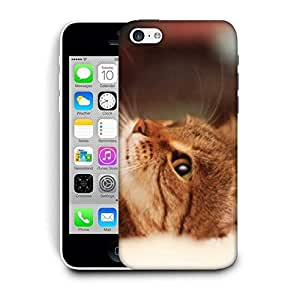 Snoogg Cute Kitty Printed Protective Phone Back Case Cover For Apple Iphone 6+ / 6 Plus