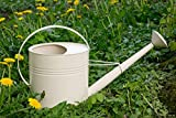 KUHEIGA Gießkanne 10 Liter Creme Metall Verzinkt Zink Kanne 1015 Wasserkanne