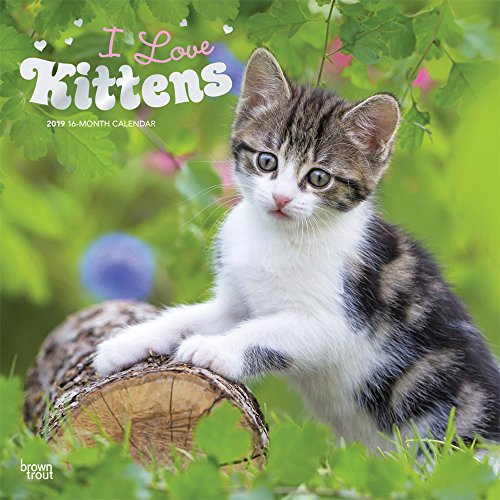 I love Kittens - Ich liebe Kätzchen 2019 - 18-Monatskalender: Original BrownTrout-Kalender [Mehrsprachig] [Kalender] por Inc Browntrout Publishers