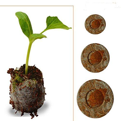 40pcs Count 30mm Jiffy turba Pellets semillas partida Plugs, herramienta de jardín...