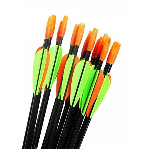 AAC CARBON INIT - Lot de 6 flèches en carbone - Pour arc de loisir 20/25 lbs - Jeunes et adultes.