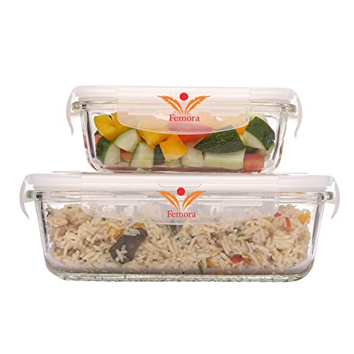 Femora Borosilicate Rectangle Glass Food Storage Container with Air Vent Lid-400ml,620ml(Set of 2)