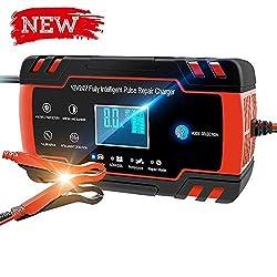 Directtyteam Autobatterie Ladegerät 12v24v Volt Motorrad batterieladegerät Mit Fahrzeugmodus&Reparaturmodus (Red Black)
