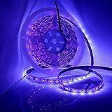 DeepDream UV Schwarzlicht Led Streifen 10M/32.8ft 48W IP65 Wasserdicht 600 Stück, 12V 4A Netzteil [Energieklasse A+]