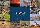 Sambia - wundervolle Wildnis (Tischkalender 2019 DIN A5 quer): Das wahre Afrika erleben (Monatskalender, 14 Seiten ) (CALVENDO Orte) - Wibke Woyke