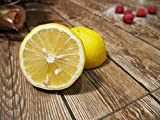 Citrus limon - echter Zitronenbaum - verschiedene Größen (160-180cm - Topf Ø 35cm)