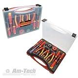 EN60900 S9Q1 AM-TECH Elektriker-Werkzeugset