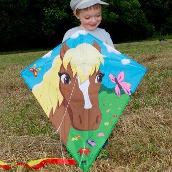CIM Kinder-Drachen - Dream Eddy Pferd - Einleiner für Kinder ab 3 Jahren - Abmessung: 65x72cm - inkl. 80m Drachenschnur und Streifenschwänze