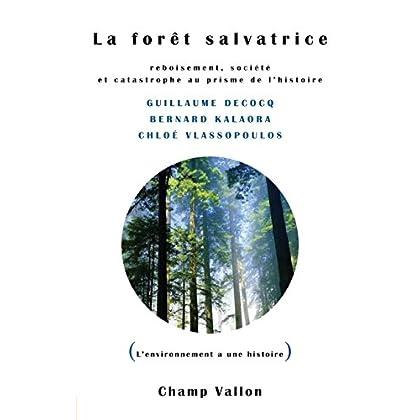 La Forêt salvatrice: Reboisement, société et catastrophe au prisme de l'histoire (L'environnement a une histoire)
