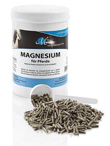MIGOCKI Tierernährung M-Premium Magnesium – 750 g – Nahrungsergänzung für Pferde – Unterstützt die Gelassenheit und Leistungsbereitschaft von Pferden – Pellets