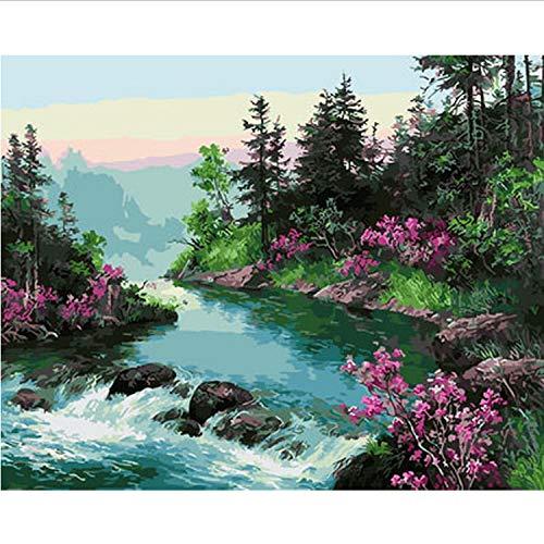 Y Gemälde Nach Zahlen Malen Nach Zahlen Für Wohnkultur Ölbild Malerei 50 * 65 cm ()