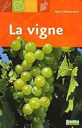 La vigne : Le choix des cépages, la taille, les soins