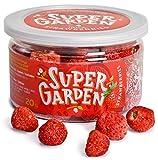 Supergarden bayas de verano liofilizadas (Fresas Enteras)
