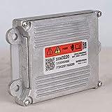 FDBF HID Bulb Control Unit Computer Module ECU for Buick Lacrosse Xenon Ballast