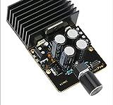 Q-BAIHE Amplificatore di potenza amplificatore di potenza del modulo amplificatore di potenza stereo a doppio canale 12V