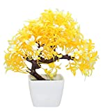 #7: TiedRibbons® Artficial bonsai indoor plants   artificial plant for balcony   bonsai indoor plants for home   diwali gifts for home